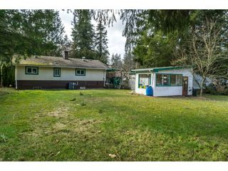 "Photo 19: 5164 236 Street in Langley: Salmon River House for sale in ""Salmon River"" : MLS®# R2347868"