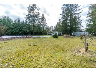 "Photo 18: 5164 236 Street in Langley: Salmon River House for sale in ""Salmon River"" : MLS®# R2347868"