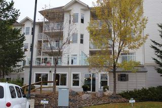 Photo 22: 317 14259 50 Street NW in Edmonton: Zone 02 Condo for sale : MLS®# E4153451