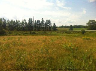 Photo 3: 8+/- ACRES NO 6 HIGHWAY in Toney River: 108-Rural Pictou County Vacant Land for sale (Northern Region)  : MLS®# 201910854
