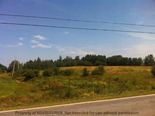 Photo 6: 8+/- ACRES NO 6 HIGHWAY in Toney River: 108-Rural Pictou County Vacant Land for sale (Northern Region)  : MLS®# 201910854