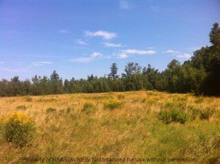 Photo 1: 8+/- ACRES NO 6 HIGHWAY in Toney River: 108-Rural Pictou County Vacant Land for sale (Northern Region)  : MLS®# 201910854