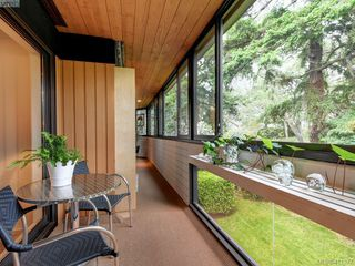 Photo 19: 306 1106 Glenora Pl in VICTORIA: SE Maplewood Condo for sale (Saanich East)  : MLS®# 815481