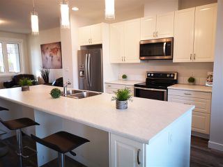 Photo 1: 11833 55 Street in Edmonton: Zone 06 House Half Duplex for sale : MLS®# E4159096