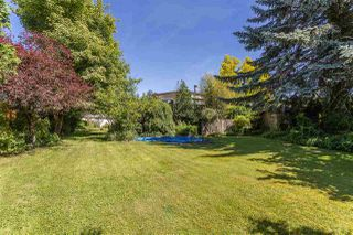 Photo 5: 31661 SOUTHDALE Crescent in Abbotsford: Abbotsford West House for sale : MLS®# R2378760