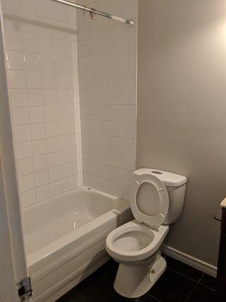 Photo 3: 24 10920 53 Avenue NW in Edmonton: Zone 15 Condo for sale : MLS®# E4163184