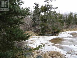 Photo 5: Lot East Port Loop Road in East Port Medway: Vacant Land for sale : MLS®# 202000583