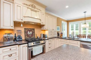 Photo 16: 9228 BODNER Terrace in Mission: Mission BC House for sale : MLS®# R2508559
