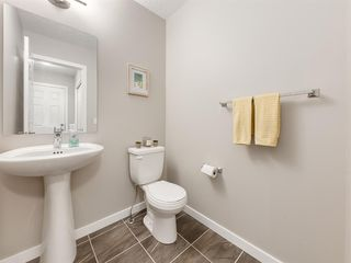 Photo 11: 56 Skyview Point Crescent NE in Calgary: Skyview Ranch Detached for sale : MLS®# A1045554