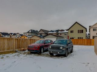 Photo 27: 56 Skyview Point Crescent NE in Calgary: Skyview Ranch Detached for sale : MLS®# A1045554