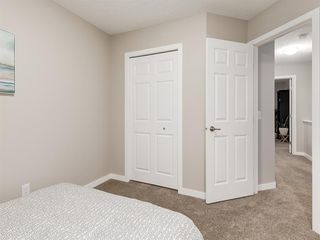 Photo 22: 56 Skyview Point Crescent NE in Calgary: Skyview Ranch Detached for sale : MLS®# A1045554