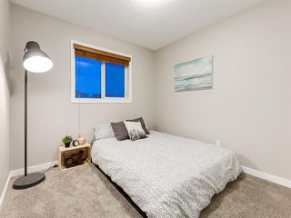 Photo 21: 56 Skyview Point Crescent NE in Calgary: Skyview Ranch Detached for sale : MLS®# A1045554