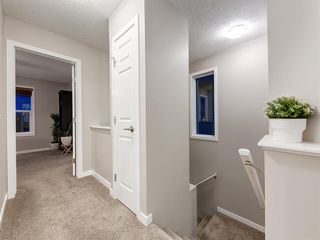 Photo 13: 56 Skyview Point Crescent NE in Calgary: Skyview Ranch Detached for sale : MLS®# A1045554
