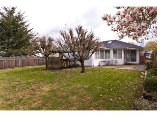Photo 15: 9125 156A Street in Surrey: Fleetwood Tynehead House for sale : MLS®# F1111243