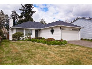 Photo 1: 9125 156A Street in Surrey: Fleetwood Tynehead House for sale : MLS®# F1111243