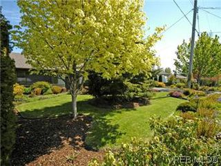 Photo 6: 4453 Casa Linda Dr in VICTORIA: SW Royal Oak Single Family Detached for sale (Saanich West)  : MLS®# 571417
