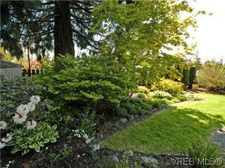Photo 7: 4453 Casa Linda Dr in VICTORIA: SW Royal Oak Single Family Detached for sale (Saanich West)  : MLS®# 571417