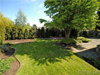 Photo 10: 4453 Casa Linda Dr in VICTORIA: SW Royal Oak Single Family Detached for sale (Saanich West)  : MLS®# 571417