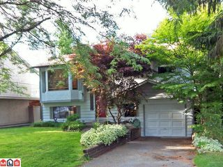 """Photo 1: 13245 64A Avenue in Surrey: West Newton House for sale in """"Pioneer Park"""" : MLS®# F1119787"""