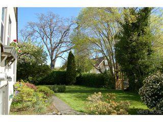 Photo 19: 1650 Davie Street in VICTORIA: Vi Jubilee Residential for sale (Victoria)  : MLS®# 322366