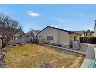 Photo 22: 235 TEMPLEVALE Road NE in Calgary: Temple House for sale : MLS®# C4003858