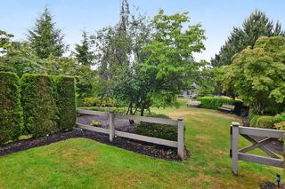 "Photo 20: 65 6050 166TH Street in Surrey: Cloverdale BC Townhouse for sale in ""WESTFIELD"" (Cloverdale)  : MLS®# F1442230"