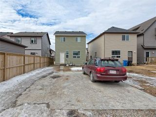 Photo 22: 203 SKYVIEW POINT Road NE in Calgary: Skyview Ranch House for sale : MLS®# C4106765