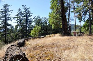 Photo 13: 5270 Sooke Road in SOOKE: Sk Saseenos Land for sale (Sooke)  : MLS®# 381449