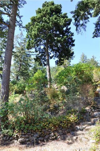 Photo 19: 5270 Sooke Road in SOOKE: Sk Saseenos Land for sale (Sooke)  : MLS®# 381449