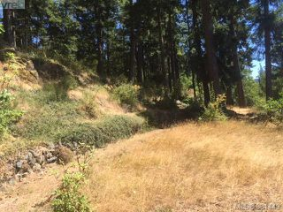 Photo 18: 5270 Sooke Road in SOOKE: Sk Saseenos Land for sale (Sooke)  : MLS®# 381449