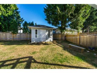 """Photo 19: 12477 77A Avenue in Surrey: West Newton House for sale in """"Strawberry Hill"""" : MLS®# R2206395"""