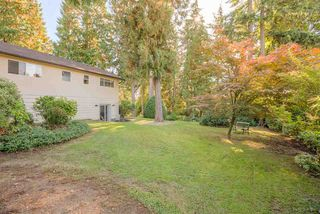 "Photo 18: 3311 DALEBRIGHT Drive in Burnaby: Government Road House for sale in ""GOVERNMENT ROAD"" (Burnaby North)  : MLS®# R2214815"