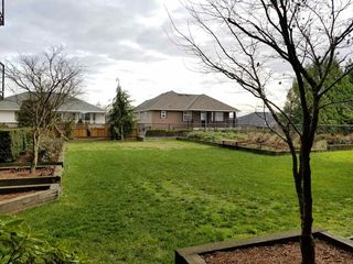 "Photo 15: 116 30525 CARDINAL Avenue in Abbotsford: Abbotsford West Condo for sale in ""Tamarind"" : MLS®# R2228201"