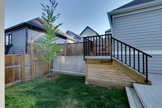 Photo 11: 15818 MOUNTAIN VIEW DRIVE in Surrey: Grandview Surrey House for sale (South Surrey White Rock)  : MLS®# R2206200