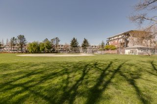 Photo 27: Port Coquitlam Condo for Sale 102 2340 Hawthorne Ave 2 bedrooms 1 bathroom 786 sq. ft.