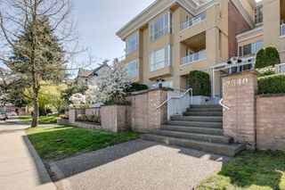 Photo 1: Port Coquitlam Condo for Sale 102 2340 Hawthorne Ave 2 bedrooms 1 bathroom 786 sq. ft.