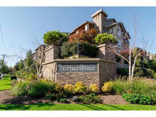 """Main Photo: 119 21009 56 Avenue in Langley: Salmon River Condo for sale in """"CORNERSTONE"""" : MLS®# R2260684"""