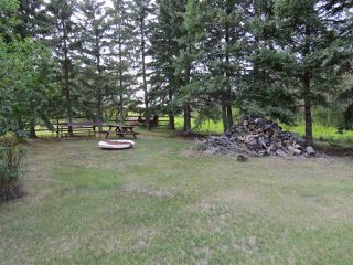 Photo 6: 4526 43 Avenue: Rural Flagstaff County House for sale : MLS®# E4125345