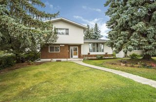 Main Photo:  in Edmonton: Zone 15 House for sale : MLS®# E4128775