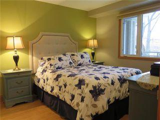 Photo 13: 304 99 Gerard Street in Winnipeg: Osborne Village Condominium for sale (1B)  : MLS®# 1902558