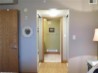 Photo 14: 304 99 Gerard Street in Winnipeg: Osborne Village Condominium for sale (1B)  : MLS®# 1902558
