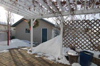 Photo 23: 3043 TRELLE Crescent in Edmonton: Zone 14 House for sale : MLS®# E4146550