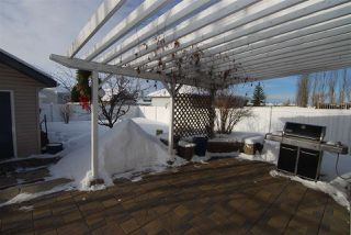 Photo 21: 3043 TRELLE Crescent in Edmonton: Zone 14 House for sale : MLS®# E4146550