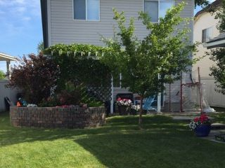 Photo 29: 3043 TRELLE Crescent in Edmonton: Zone 14 House for sale : MLS®# E4146550