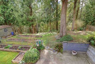 Photo 15: 1394 MADORE Avenue in Coquitlam: Central Coquitlam House for sale : MLS®# R2352555