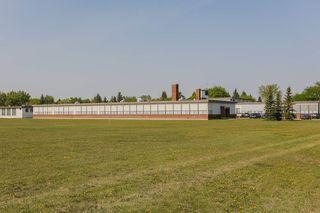 Photo 10: 7540 81 Avenue in Edmonton: Zone 17 Attached Home for sale : MLS®# E4159011