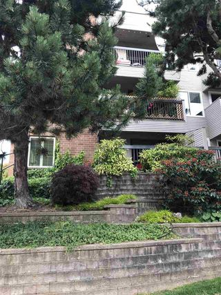 "Photo 20: 103 222 N TEMPLETON Drive in Vancouver: Hastings Condo for sale in ""CAMBRIDGE COURT"" (Vancouver East)  : MLS®# R2383049"