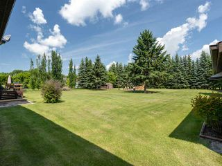 Photo 26: 9 55204 Range Road 222: Rural Sturgeon County House for sale : MLS®# E4163643