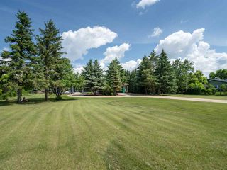 Photo 29: 9 55204 Range Road 222: Rural Sturgeon County House for sale : MLS®# E4163643