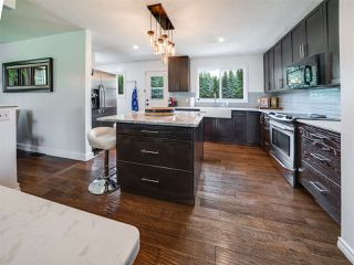 Photo 9: 9 55204 Range Road 222: Rural Sturgeon County House for sale : MLS®# E4163643